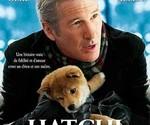 hachi, köpeğin, hikayesi, dog, story